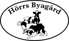 Välkommen till Hörrs byagård- Uppfödning av dorper, vit dorper, dorset och produktion av KRAV mjölk